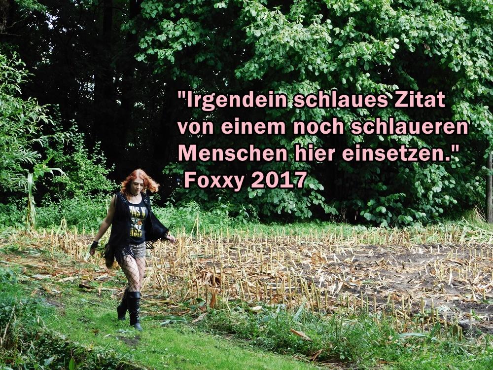 Zitat2017