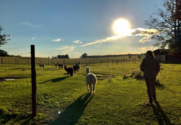 Cordes_ranch