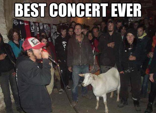 best_concert_ever